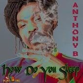 How Do You Sleep - Single by Anthony B