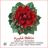 Play & Download Shlêre by Various Artists | Napster