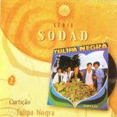 Curtição (Série Sodad - Vol. 2) by Tulipa Negra