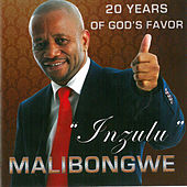 Inzulu ( 20 years of God's favor) by Malibongwe