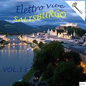 Play & Download Elettro Vibe Salisburgo, Vol. 13 by Various Artists | Napster