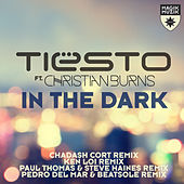 In the Dark (Remixes) by Tiësto