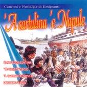 'A Cartulina 'E Napule by Various Artists