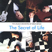 Play & Download The Secret of Life by The Ukulele Orchestra of Great Britain | Napster