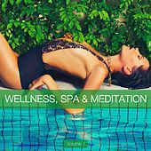 Wellness, Spa & Meditation, Vol. 1 by Various Artists