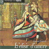 Play & Download L'elisir d'amore - Gaetano Donizetti by Various Artists | Napster
