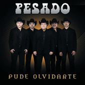 Play & Download Pude Olvidarte by Pesado | Napster
