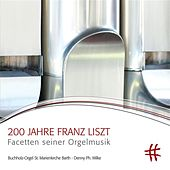 Play & Download 200 Jahre Franz Liszt by Denny Ph. Wilke | Napster