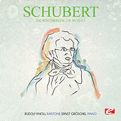 Play & Download Schubert: Die Winterreise, Op. 89, D.911 (Digitally Remastered) by Ernst Gröschel | Napster