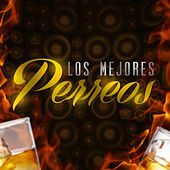 Play & Download Los Mejores Perreos by Various Artists | Napster