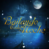 Play & Download Bailando Toda la Noche by Various Artists | Napster