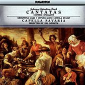 Play & Download Bach: Cantatas - Coffee & Peasant by Krisztina Laki | Napster