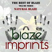 The Best of Blaze, Vol. 3 - Natural Blaze by Blaze