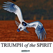 Play & Download Triumph Of The Human Spirit by Country Dance Kings | Napster