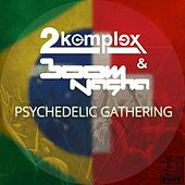 Play & Download Psychedelic Gathering by 2Komplex | Napster