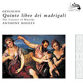 Play & Download Gesualdo: Quinto Libro di Madrigali by Consort Of Musicke | Napster