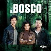 Play & Download Il Bosco by Andrea Farri | Napster