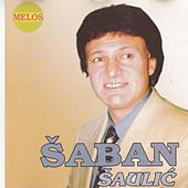 Saban Saulic by Saban Saulic