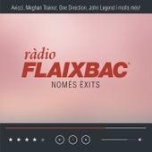 Flaixbac 2015 de Various Artists