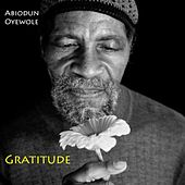 Play & Download Gratitude by Abiodun Oyewole | Napster