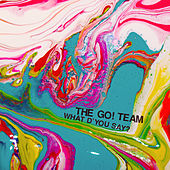 What D'You Say? von The Go! Team