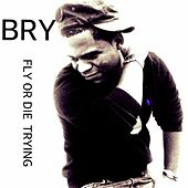 Fly or Die Trying by Bry