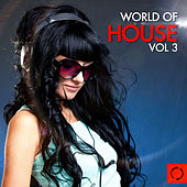 Play & Download World of House, Vol. 3 by Various Artists | Napster