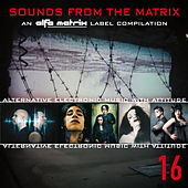 Play & Download Sounds from the Matrix 16 by Various Artists | Napster