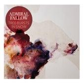 Tree Bursts in Snow (Bonus Track Version) by Admiral Fallow