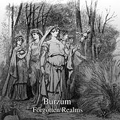 Play & Download Forgotten Realm by Burzum | Napster