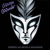 Play & Download Assim Assado - Tributo Ao Secos e Molhados by Various Artists | Napster