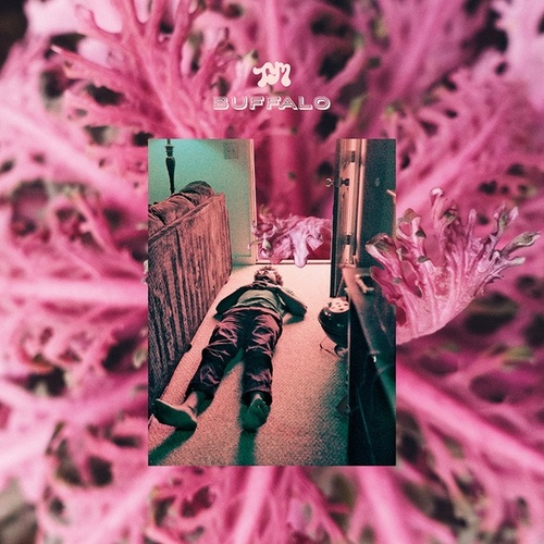 Play & Download Buffalo by Toro Y Moi | Napster