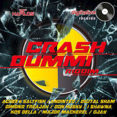 Crash Dummi Riddim by Various Artists