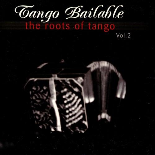 Tango Bailable Vol. 2: The Roots Of Tango by Orquesta Típica De Buenos Aires