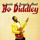 A Taste of Jungle Beat by Bo Diddley