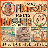 Play & Download Mad Professor Meets Marcelinho da Lua In a Dubwise Style by Various Artists | Napster