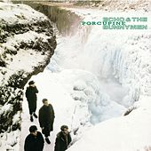 Play & Download Porcupine by Echo and the Bunnymen | Napster