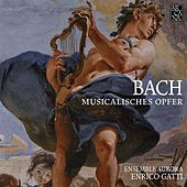 Bach: Musikalisches Opfer by Various Artists