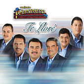Play & Download Te Llore by Conjunto Primavera | Napster