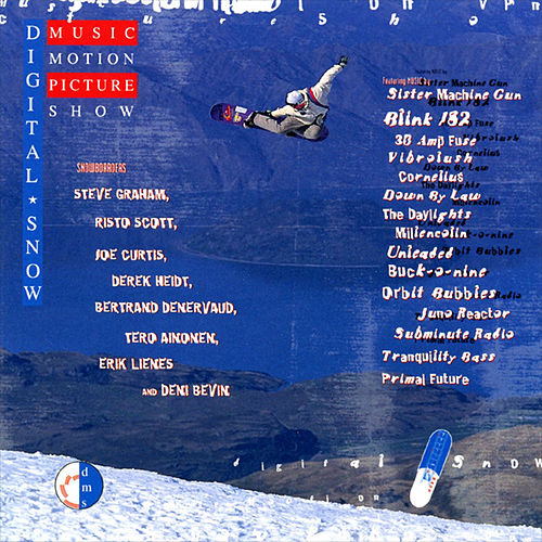 Digital Snow Music Motion Picture Show by Various Artists