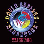 Play & Download Trick Bag by David Shelley | Napster
