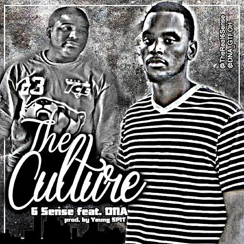 Play & Download The Culture (feat. DNA) by 6 Sense | Napster