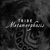 Metamorphosis by Tribe