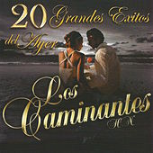 Play & Download 20 Grandes Exitos del Ayer by Los Caminantes | Napster