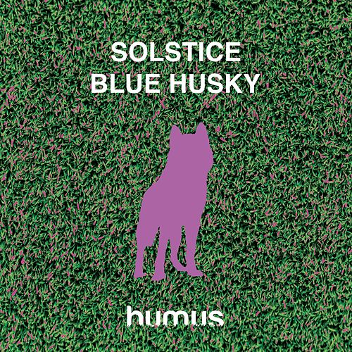 Play & Download Blue Husky by Solstice | Napster