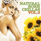 Natural Born Chillas, Vol. 3 (The Ultimate Lounge & Chill Out Experience) by Various Artists