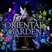 Oriental Garden, Vol. 8 by Various Artists