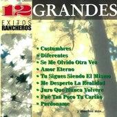 12 Grandes Exitos Rancheros by Juan Gabriel