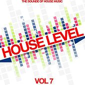 House Level, Vol. 7 (The Sound of House Music) by Various Artists