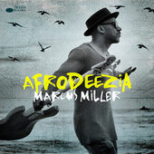 Afrodeezia by Marcus Miller
